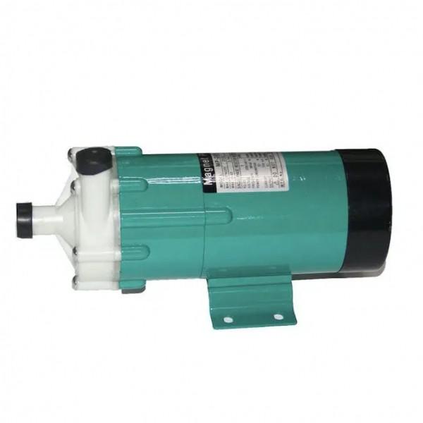 Meerwasserpumpe MP-40
